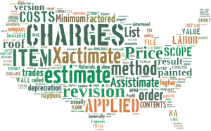 America-Xactimate-estimating-word-cloud